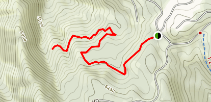 Maple Hollow Trail Map