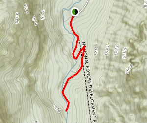 Grotto Falls Trail Map