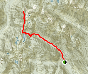 Alta Mountain South Ridge Climber's Trail Map