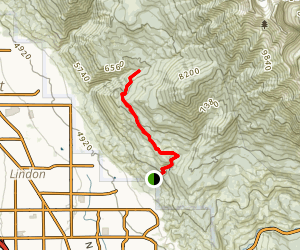 Curley Springs Trail Map