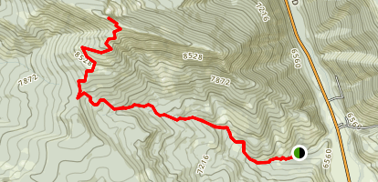 Cinnamon Mountain Trail Map