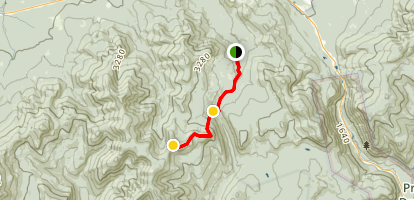 Zealand Trail to the Summit Map