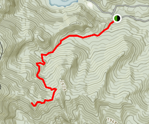 Catamount XC Trail Map