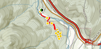 Childrens Forest Trail Map