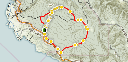 Pygmy Forest Trail Map