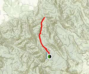 New World Gulch Trail Map