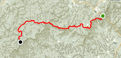 Appalachian Trail: Black Mountain to Springer Mountain Map