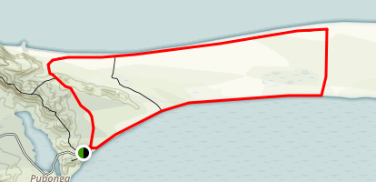 Farwell Spit Walk  Map