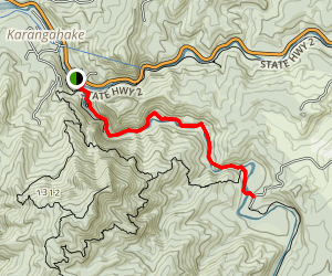 Crown Track Map