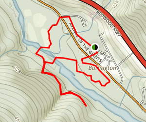 Trail of 100 Giants Trail Map