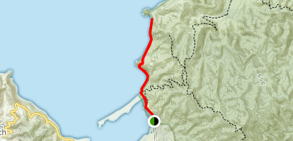 Wainui Bay Taupo Point  Map
