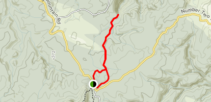 Otanewainuku Rimu Loop to Whataroa Falls Trail Map