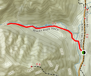 Bealey Valley Walking Track Map