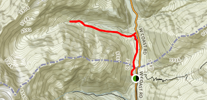 Dosbson Nature Valley Walk and Upper Otira Valley Track Map