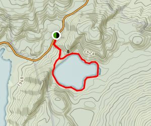 Lake Rotopounamu Loop Map