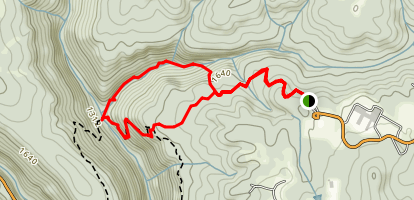 Prentice Cooper State Forest Loop Map