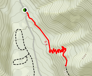 Wow Pine Canyon Trail Map