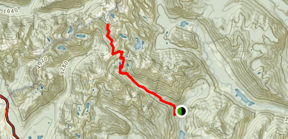 Chikamin Peak: South Slope Map