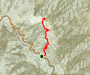 Mount Graham Trail Map