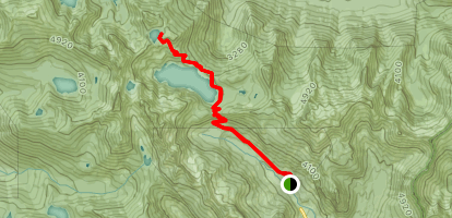 Snow Lake Trail to High Lakes Trail Map
