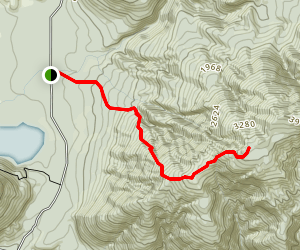 Mount Brown Track Map