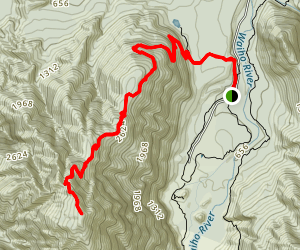 Christmas Lookout and Alex Knob Trail  Map