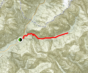 Stewart Falls and Makarora Track Map