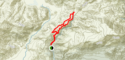 Mount Somers Walkway through Alford Forest Map