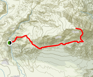 Mount Somers Peak Trail Map