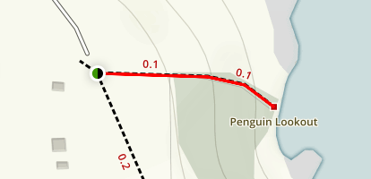Penguin Lookout Trail Map
