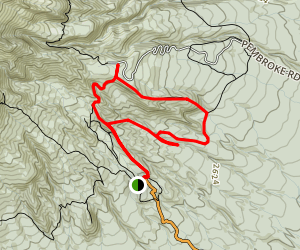 Ridge Loop Track and Waingongoro Track Loop Map
