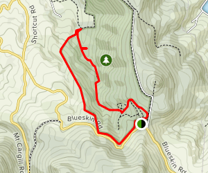 Saddleback Valley Track to New Zealand's Tallest Tree Map