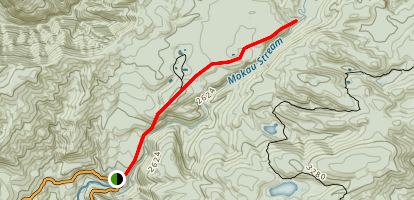 Mokau Stream Track Map
