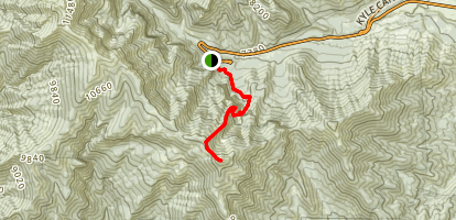 Griffith Peak Trail Map
