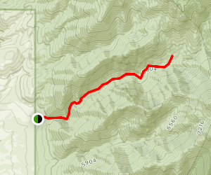 McConnell Creek Trail Map