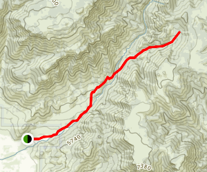 Browns Hole Trail Map