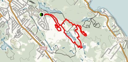 Fight Trail Map