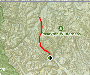 Robinson Pass Middle Fork Pasayten Trail Map