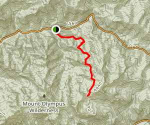 Bowman Fork Trail to Baker Pass Map
