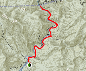 Ellicott Rock Trail Map