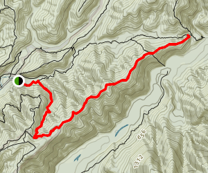 Orongaronga Track to Cattle Ridge Track Map