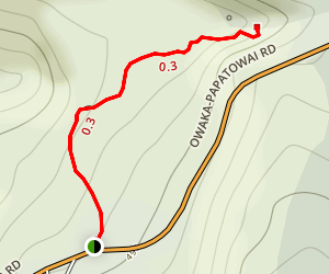 Matai Waterfall Track Map
