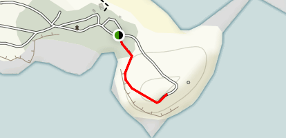 Curio Bay Trail Map