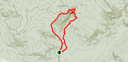 Waipohatu Loop Walk Map