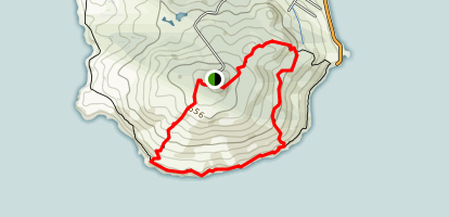 Bluff Hilltop Loop via Topuni Track, Glory Track and Millenium Track Map