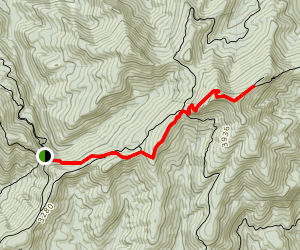 Indian Gap to Tray Mountain via Appalachian Trail Map