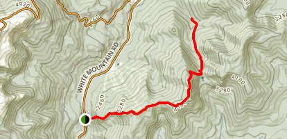 Little Wildcat Mountain Trail Map