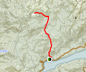 Nellie Lake Trail Map