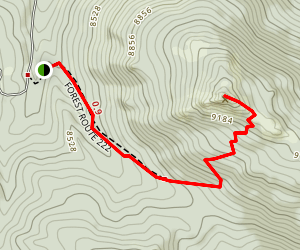 Black Mountain Lookout Trail Map
