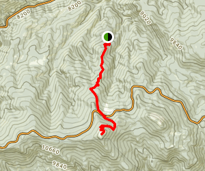 Warren Gulch to Chief Mountain Trail Map